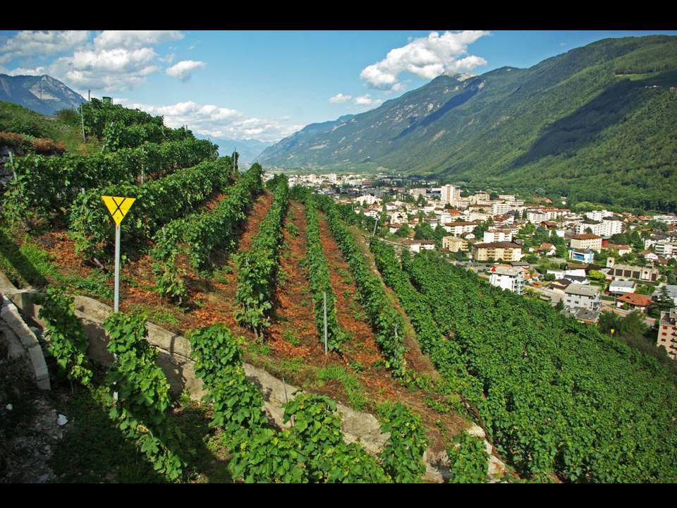 Martigny dans la vallée du Rhone ( Suisse )