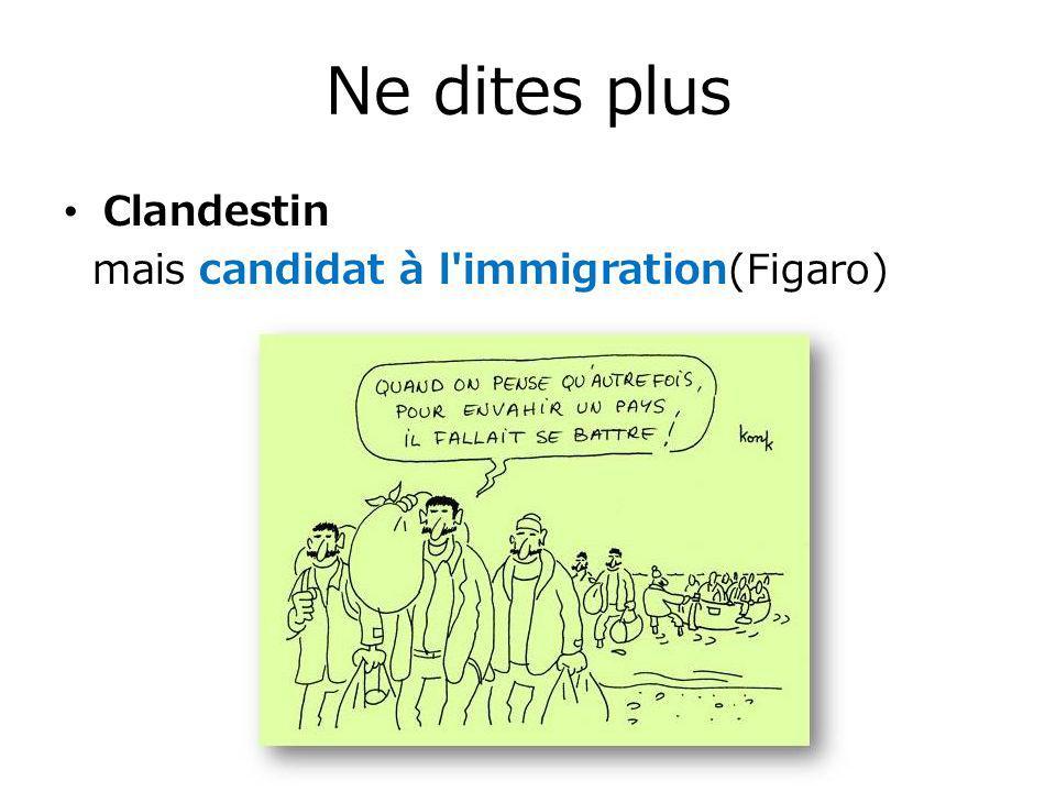 Ne dites plus Clandestin mais candidat à l immigration(Figaro)