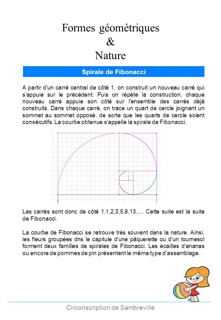 Formes géométriques & Nature Circonscription de Sambreville Spirale de Fibonacci A partir d'un carré central de côté 1, on construit un nouveau carré