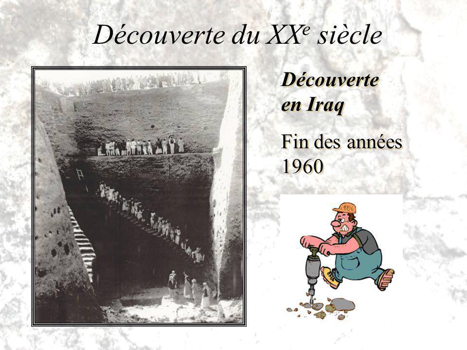 Découverte en Iraq Fin des années 1960 Découverte en Iraq Fin des années 1960 Découverte du XX e siècle