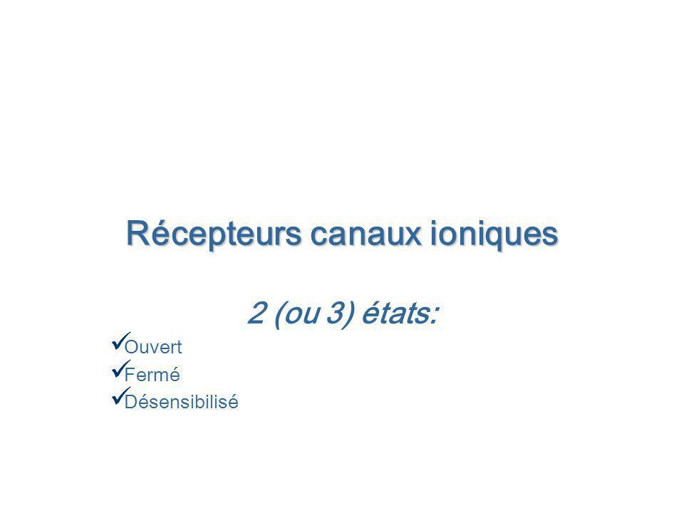 Récepteurs canaux ioniques 2 (ou 3) états: Ouvert Fermé Désensibilisé