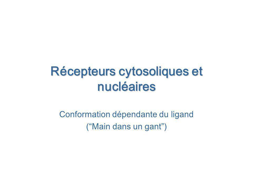 Récepteurs cytosoliques et nucléaires Conformation dépendante du ligand (Main dans un gant)