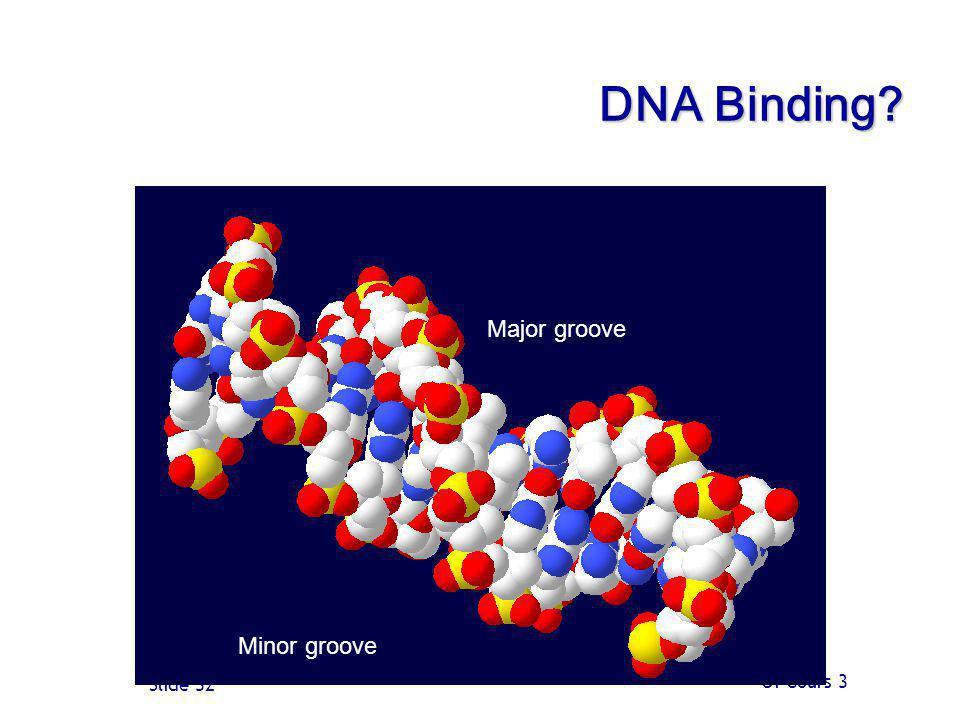 Of Cours 3 Slide 32 DNA Binding? Minor groove Major groove