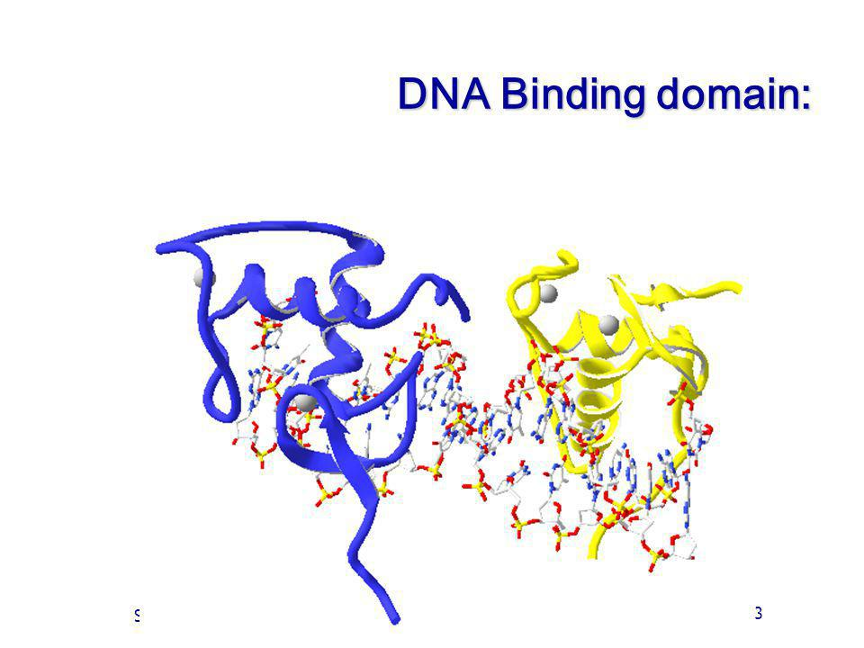 Of Cours 3 Slide 33 DNA Binding domain: