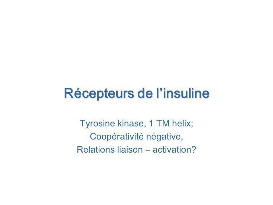 Récepteurs de linsuline Tyrosine kinase, 1 TM helix; Coopérativité négative, Relations liaison – activation?