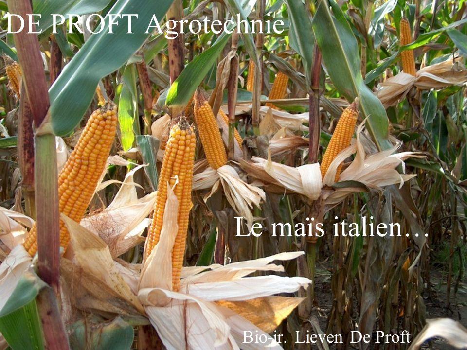 Bio-ir. Lieven De Proft Le maïs italien… DE PROFT Agrotechnie