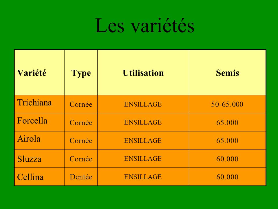 Les variétés VariétéTypeUtilisationSemis Trichiana Cornée ENSILLAGE 50-65.000 Forcella Cornée ENSILLAGE 65.000 Airola Cornée ENSILLAGE 65.000 Sluzza Cornée ENSILLAGE 60.000 Cellina Dentée ENSILLAGE 60.000