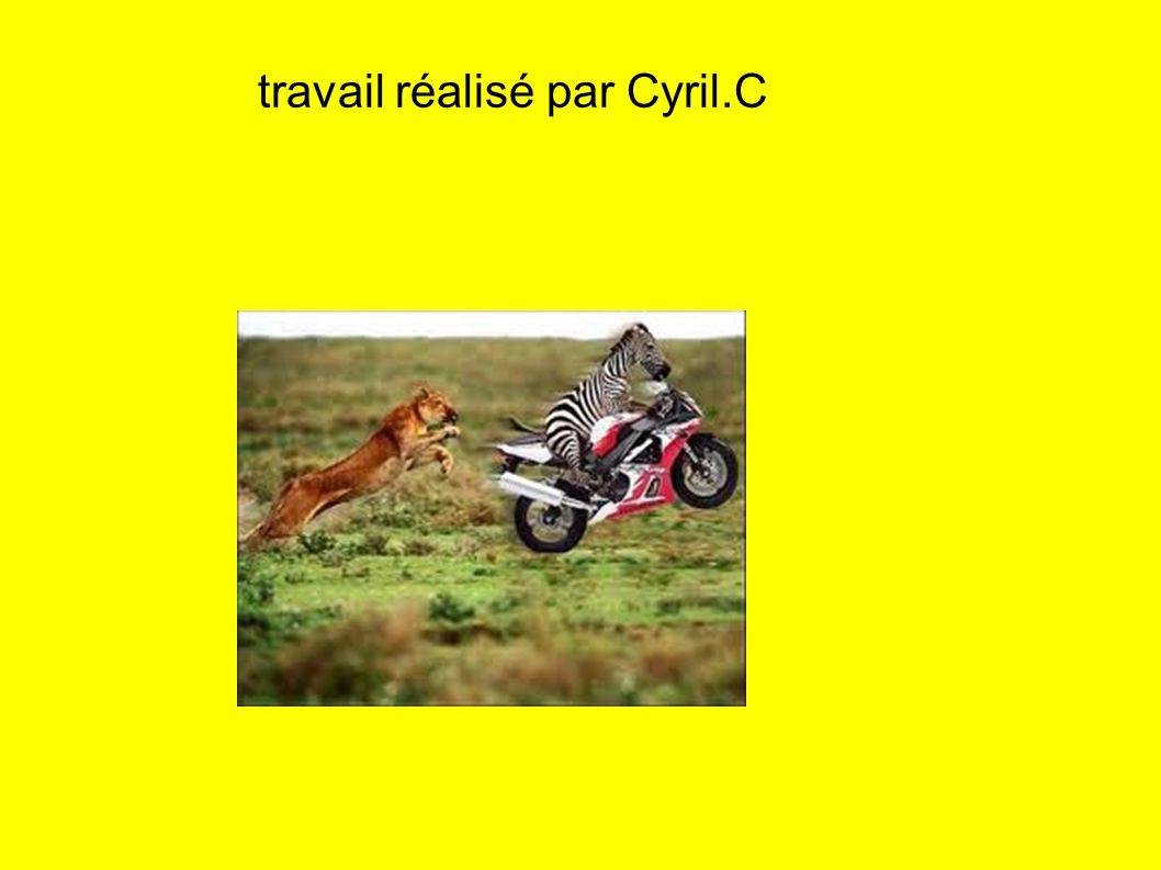 travail réalisé par Cyril.C