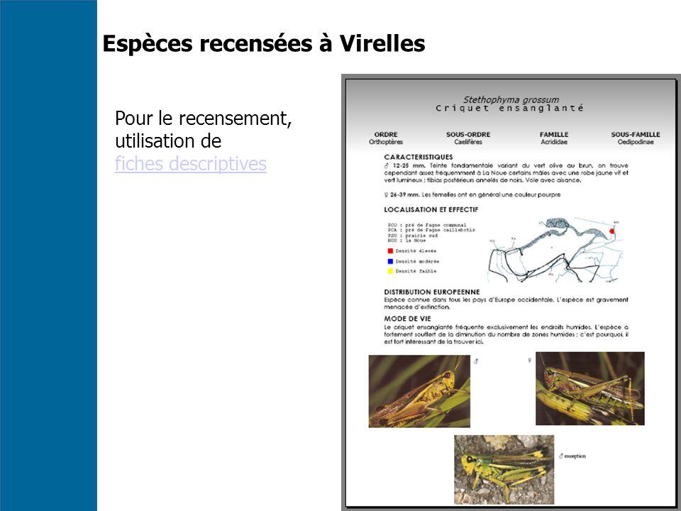 Espèces recensées à Virelles Pour le recensement, utilisation de fiches descriptives
