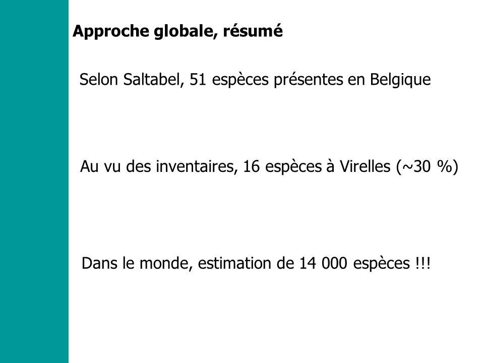 Approche globale, résumé Selon Saltabel, 51 espèces présentes en Belgique Au vu des inventaires, 16 espèces à Virelles (~30 %) Dans le monde, estimation de 14 000 espèces !!!
