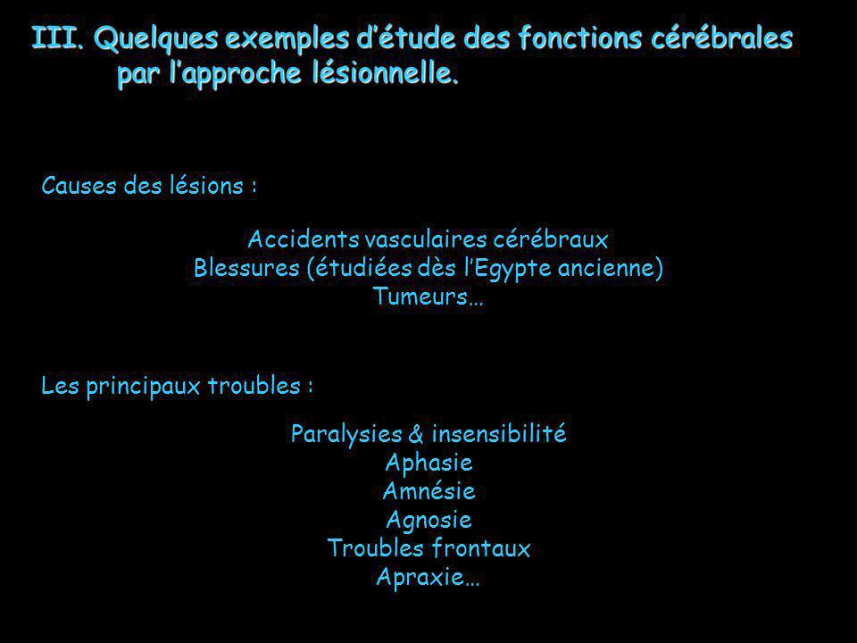 III. Quelques exemples détude des fonctions cérébrales par lapproche lésionnelle. Causes des lésions : Accidents vasculaires cérébraux Blessures (étud