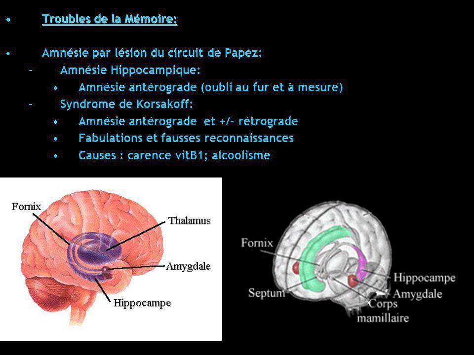 Troubles de la Mémoire:Troubles de la Mémoire: Amnésie par lésion du circuit de Papez: –Amnésie Hippocampique: Amnésie antérograde (oubli au fur et à