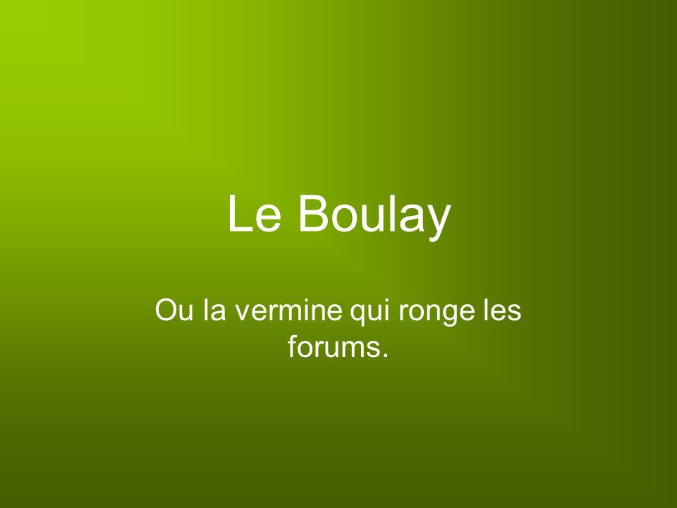 Le Boulay Ou la vermine qui ronge les forums.