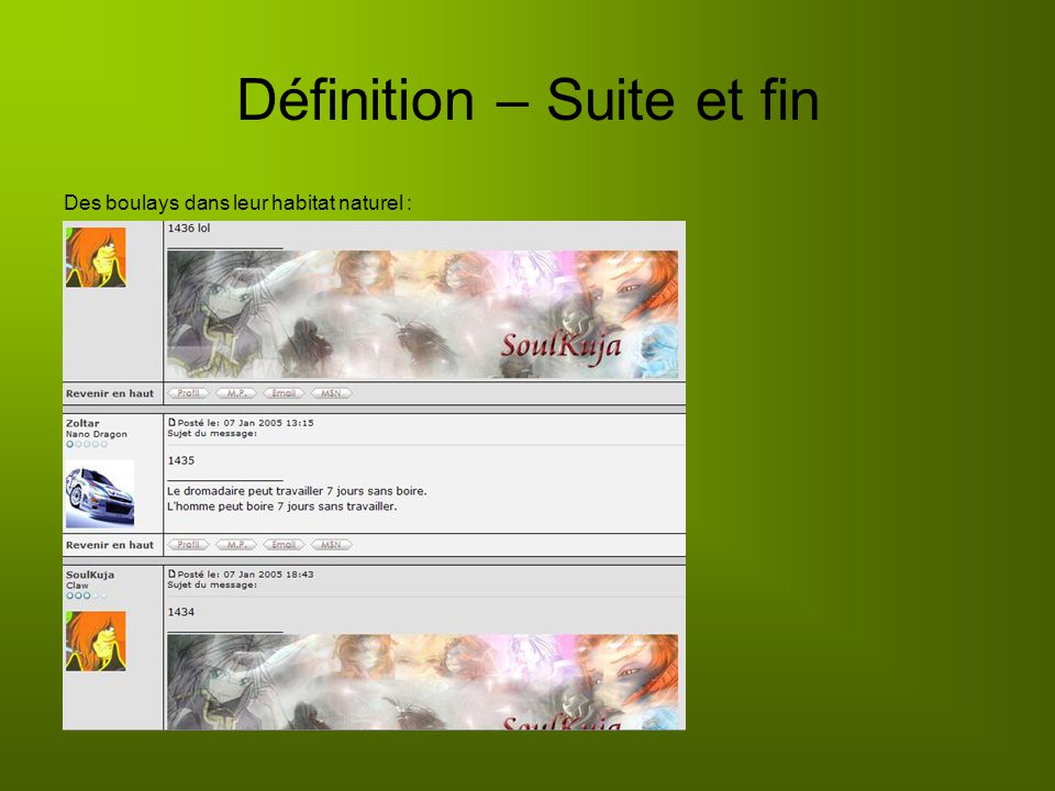 Définition – Suite et fin Des boulays dans leur habitat naturel :