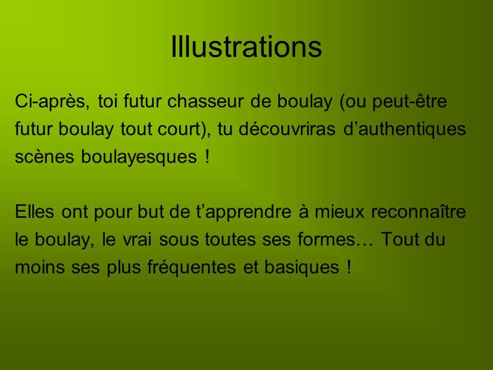 Illustrations Ci-après, toi futur chasseur de boulay (ou peut-être futur boulay tout court), tu découvriras dauthentiques scènes boulayesques .