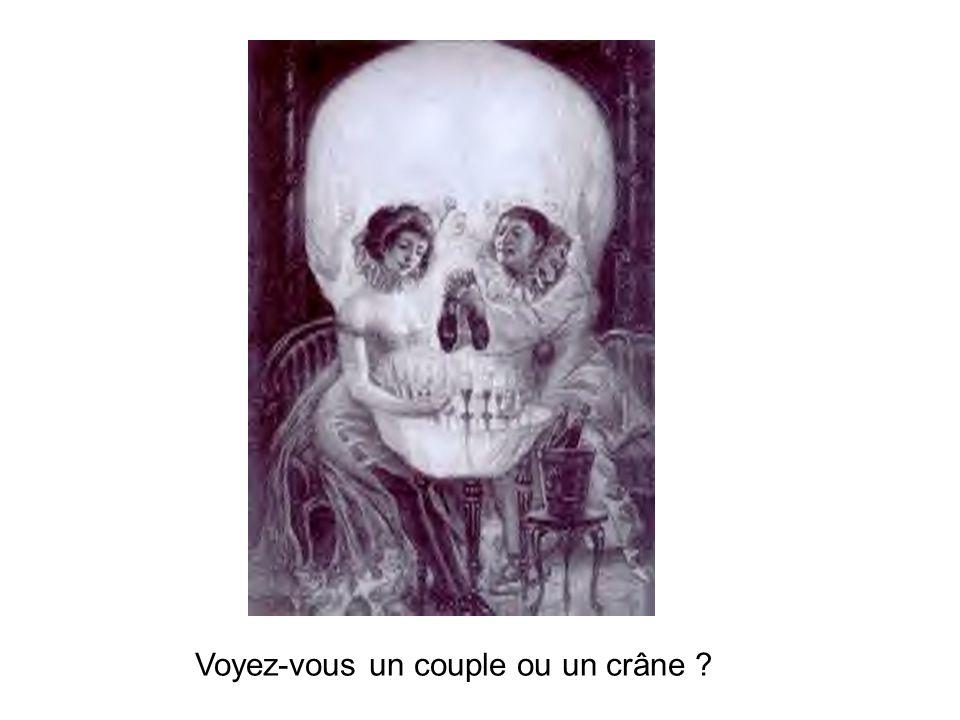Voyez-vous un couple ou un crâne ?