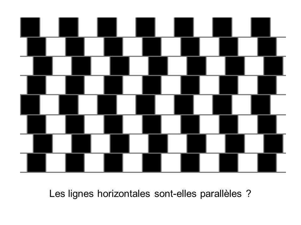 Les lignes horizontales sont-elles parallèles ?