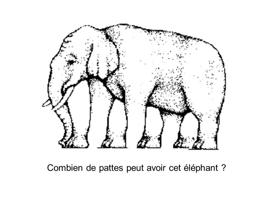 Combien de pattes peut avoir cet éléphant ?
