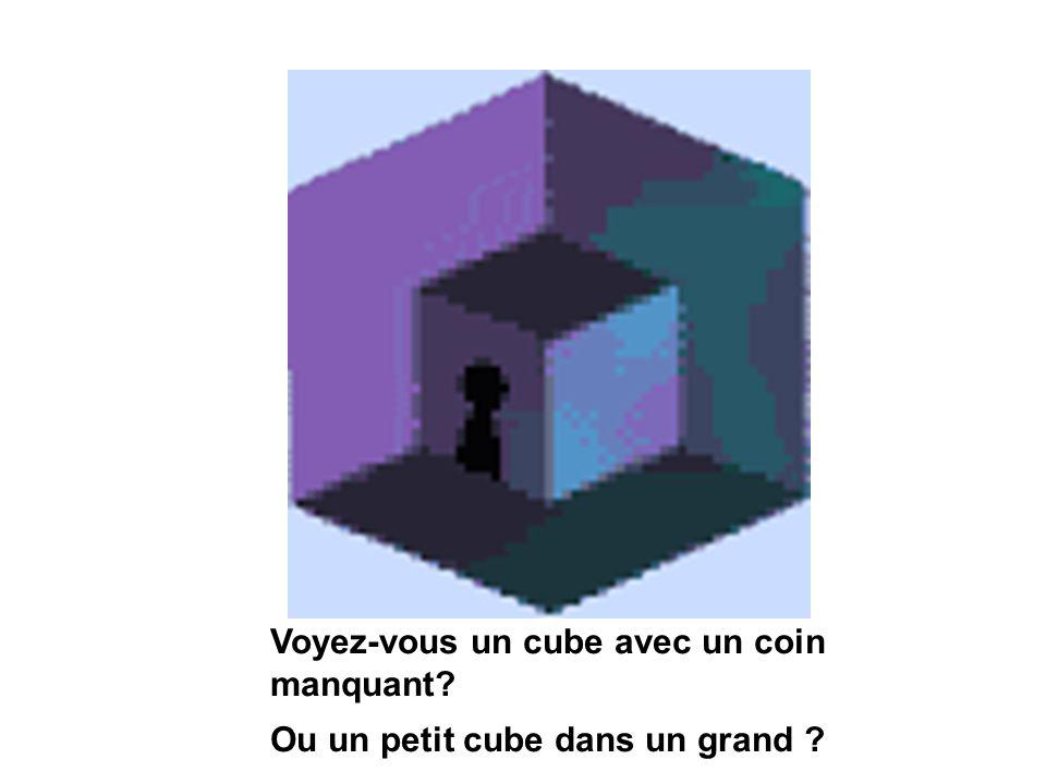 Voyez-vous un cube avec un coin manquant? Ou un petit cube dans un grand ?