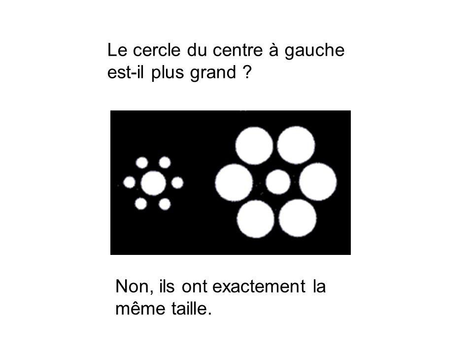 Non, ils ont exactement la même taille. Le cercle du centre à gauche est-il plus grand ?