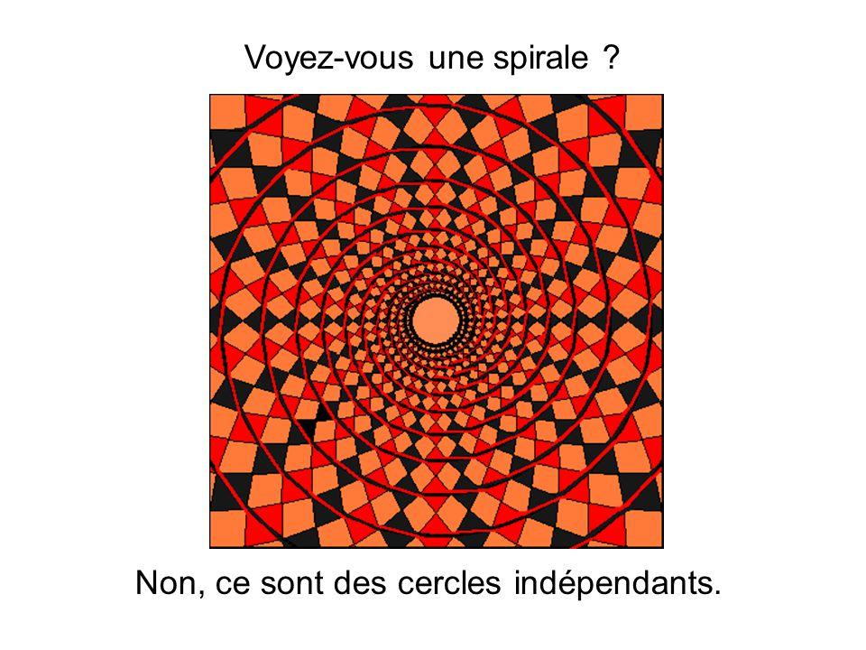 Voyez-vous une spirale ? Non, ce sont des cercles indépendants.