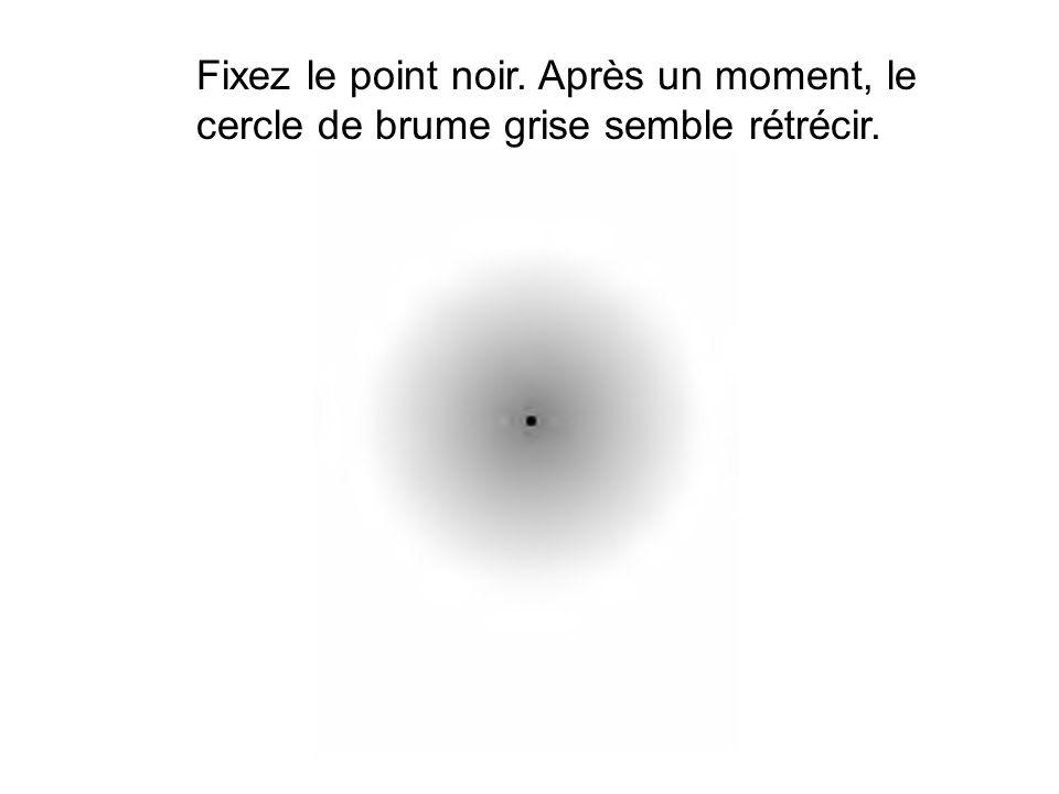 Fixez le point noir. Après un moment, le cercle de brume grise semble rétrécir.