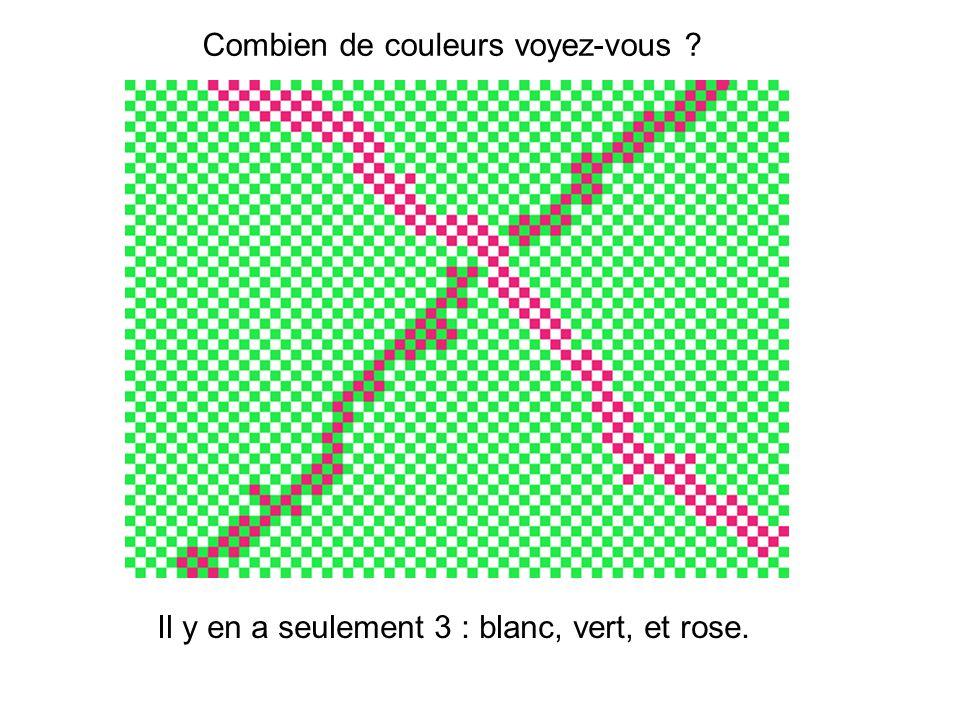 Combien de couleurs voyez-vous ? Il y en a seulement 3 : blanc, vert, et rose.