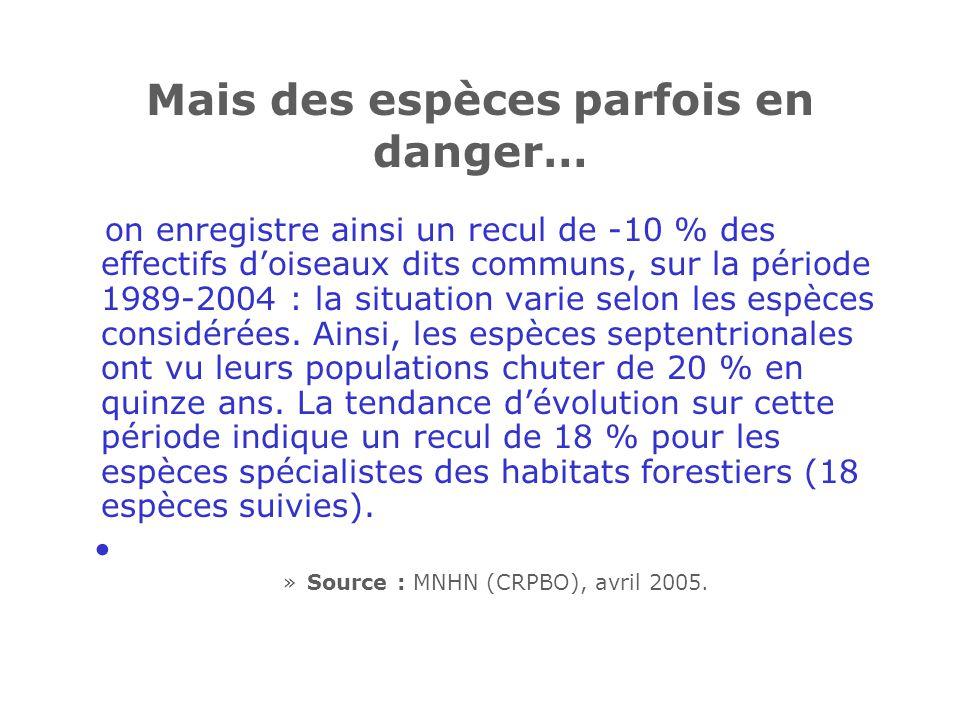 Mais des espèces parfois en danger… on enregistre ainsi un recul de -10 % des effectifs doiseaux dits communs, sur la période 1989-2004 : la situation varie selon les espèces considérées.