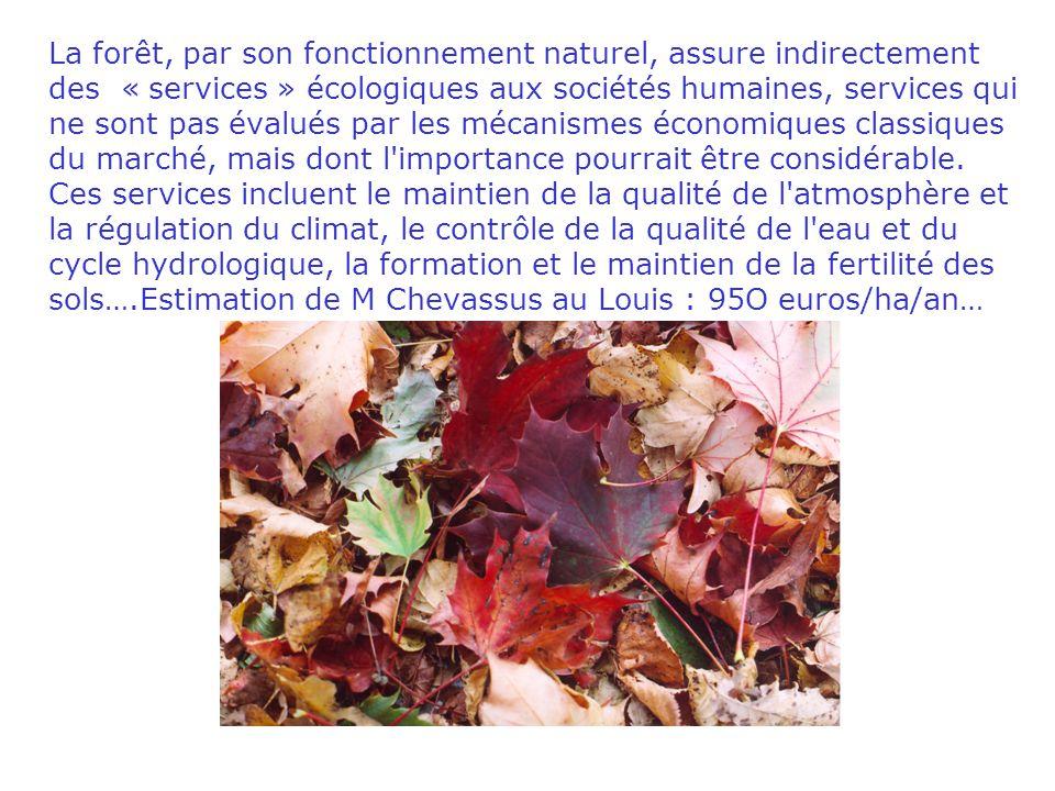 La forêt, par son fonctionnement naturel, assure indirectement des « services » écologiques aux sociétés humaines, services qui ne sont pas évalués pa