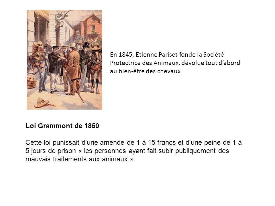 Loi Grammont de 1850 Cette loi punissait d une amende de 1 à 15 francs et d une peine de 1 à 5 jours de prison « les personnes ayant fait subir publiquement des mauvais traitements aux animaux ».