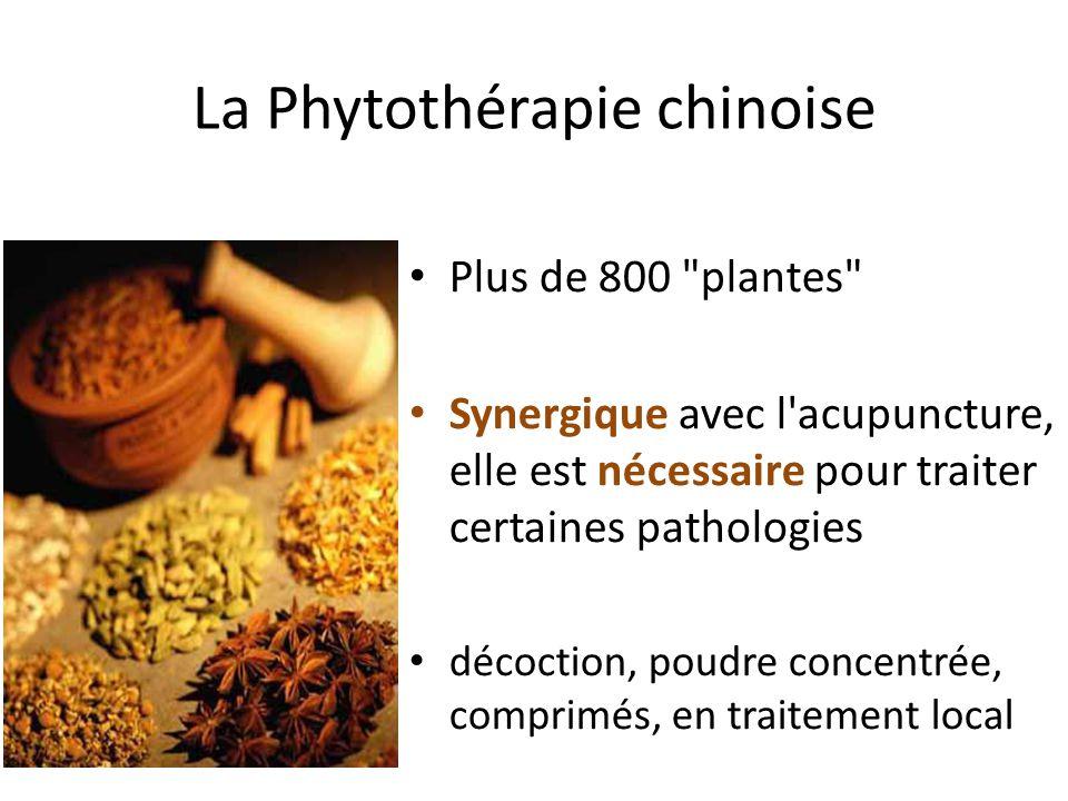 La Phytothérapie chinoise Plus de 800