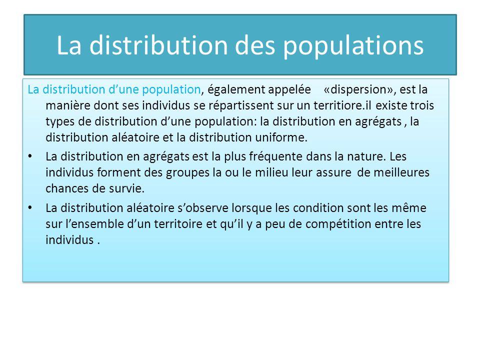 La distribution des populations La distribution dune population, également appelée «dispersion», est la manière dont ses individus se répartissent sur un territiore.il existe trois types de distribution dune population: la distribution en agrégats, la distribution aléatoire et la distribution uniforme.