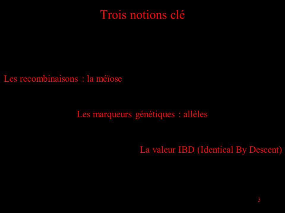 14 Le modèle mathématique Selon les lois de Mendel, sur un chromosome Pour nos N individus