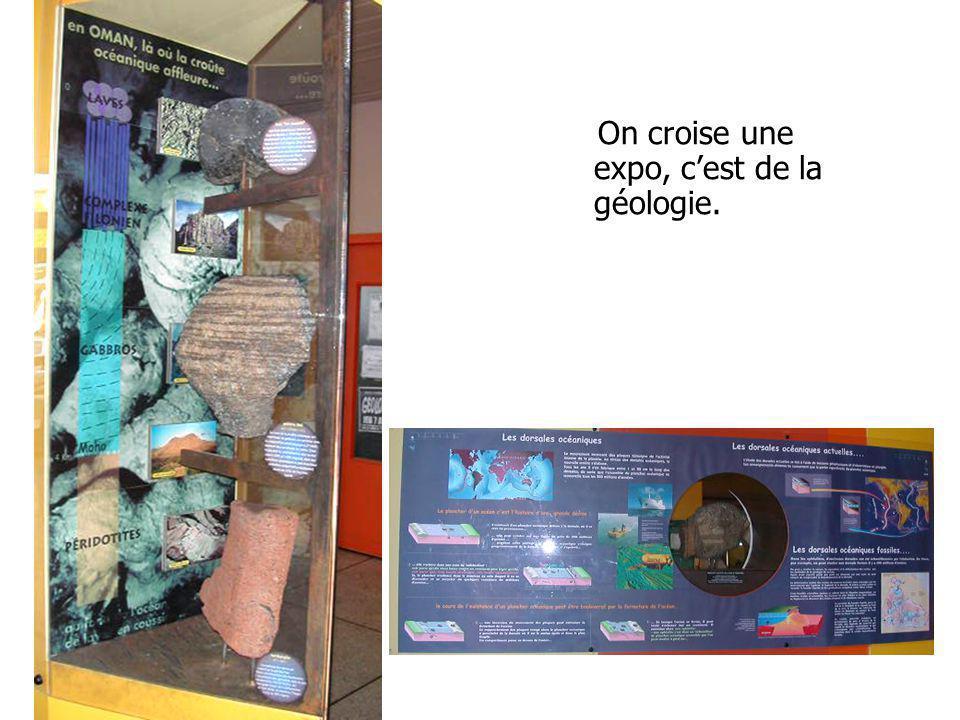 On croise une expo, cest de la géologie.
