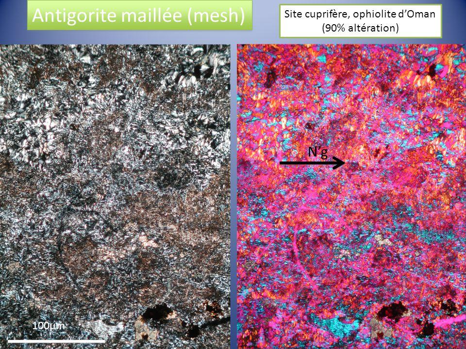 100µm Ng Antigorite maillée (mesh) Site cuprifère, ophiolite dOman (90% altération)