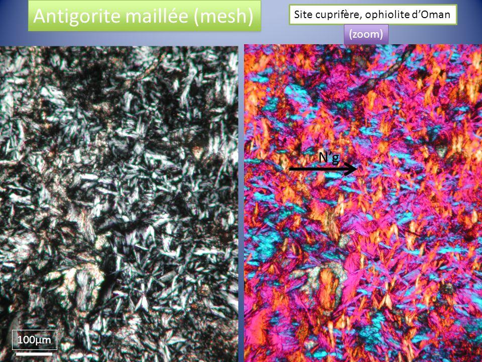 100µm Ng Antigorite maillée (mesh) Site cuprifère, ophiolite dOman (zoom)