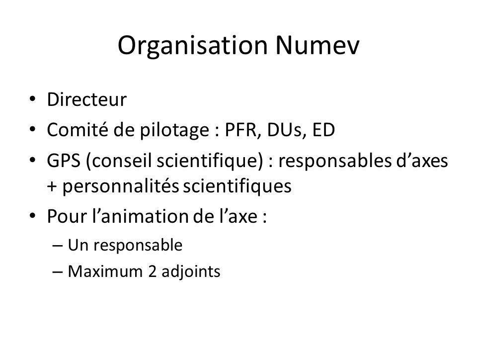 Organisation Numev Directeur Comité de pilotage : PFR, DUs, ED GPS (conseil scientifique) : responsables daxes + personnalités scientifiques Pour lani