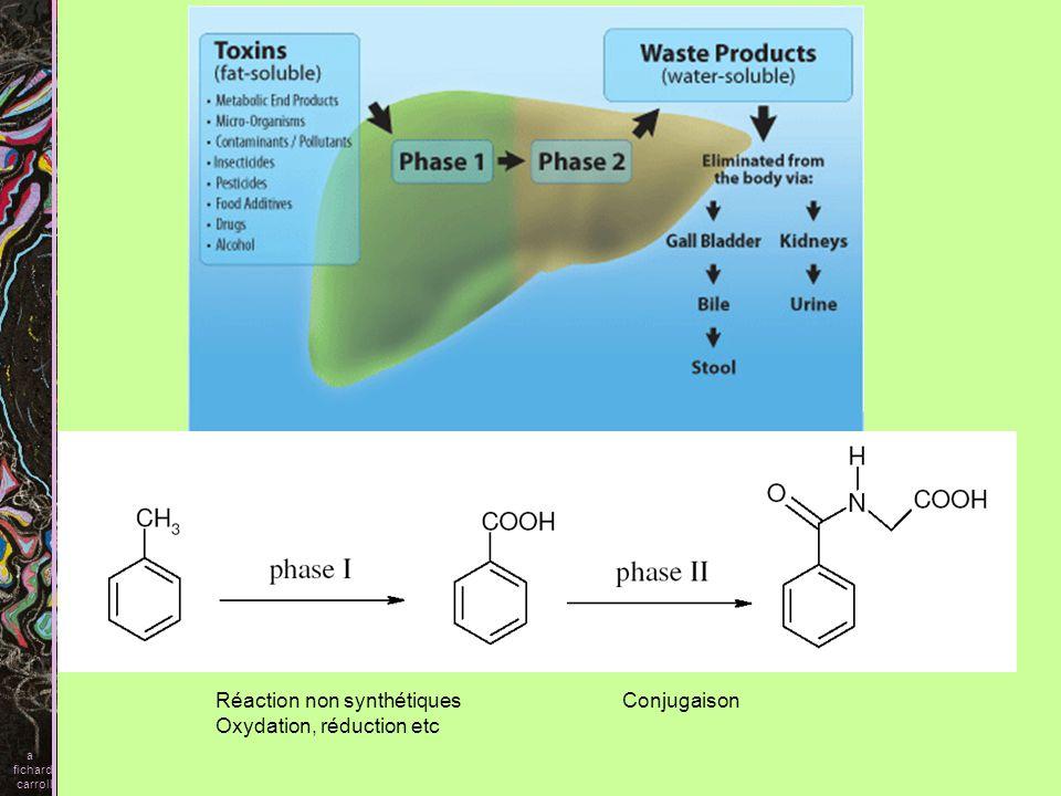 Ces transformations peuvent avoir plusieurs effets - laction de la drogue peut être renforcée ou diminuée - les métabolites peuvent être toxiques doliprane (TCA) a fichard carroll