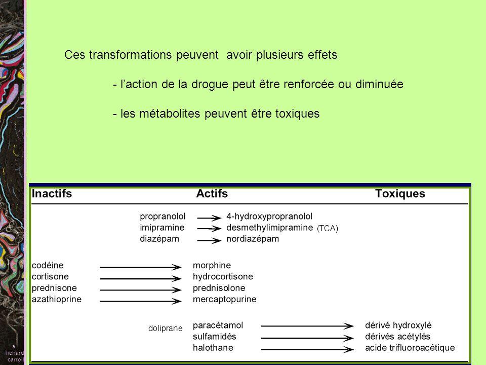Plusieurs isoformes interviennent dans le métabolisme des drogues CYP1A2 CYP3A, responsable du métabolisme du plus grand nombre de drogues CYP= cytochrome P450 2 famille génétique (plus de 40% dhomologie) A, C, D, sous famille (plus de 55% dhomologie) 9, 6,19, isoenzyme une grande quantité du cytochrome p450 na pas encore été caractérisé a fichard carroll CYP2C9 CYP2D6 CYP2E1