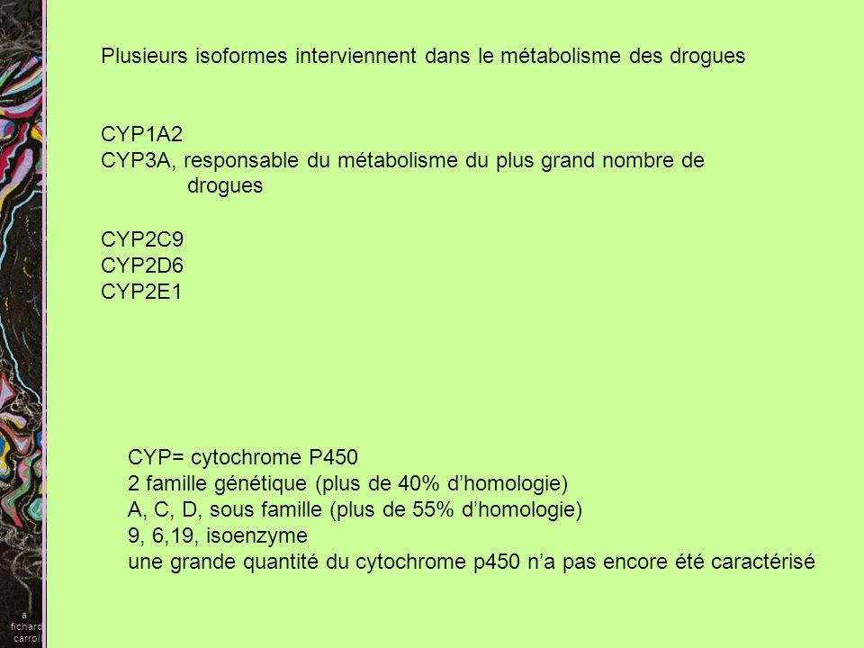 Spécificité des isoformes en fonction du substrat CYP3A - benzodiazépines - principaux bloqueurs des canaux calciques - plupart des inhibiteurs des protéases (HIV) etc… a fichard carroll CYP2D6 - antidépresseurs tricycliques - codéine -- B bloquants etc… CYP1A2 théophyline imipramine clozapine