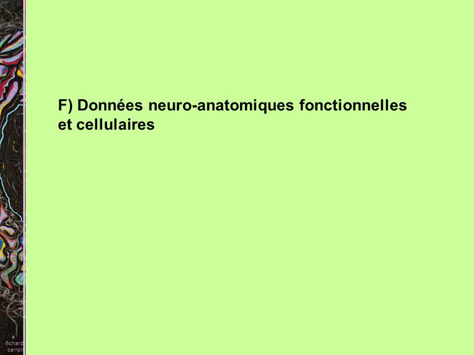 F) Données neuro-anatomiques fonctionnelles et cellulaires a fichard carroll