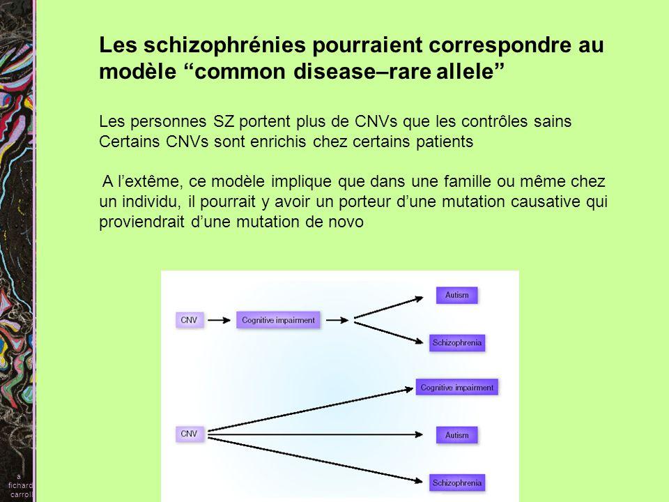 a fichard carroll Serotonin transporter Gènes avec polymorphisme relié aux troubles psy Circuit dans lesquelles Ces gènes interviennent En haut, cortex préfrontal, midbrain, striatum En bas, amygdale, cortex, sy limbique Ces circuits sont impliqués dans des fonctions neuropsy altérées dans SZ et dépresssion Metabotropic glutamate receptor 3