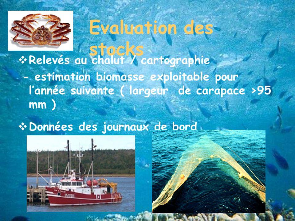 Evaluation des stocks Relevés au chalut / cartographie - estimation biomasse exploitable pour lannée suivante ( largeur de carapace >95 mm ) Données des journaux de bord (observateurs)