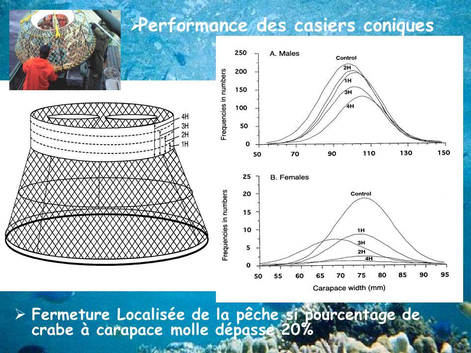 Performance des casiers coniques Fermeture Localisée de la pêche si pourcentage de crabe à carapace molle dépasse 20%