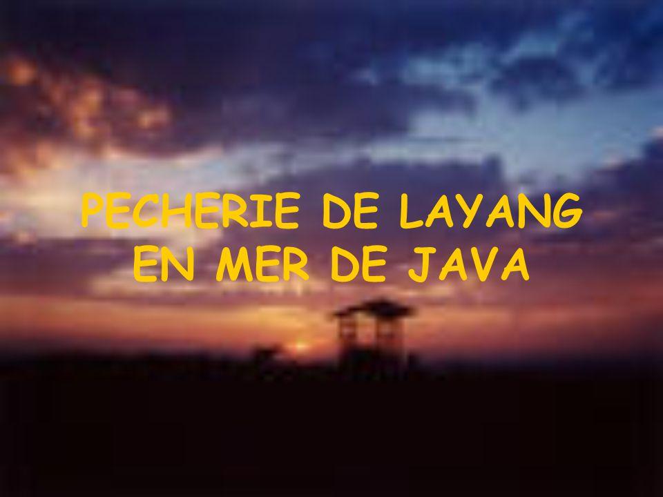 PECHERIE DE LAYANG EN MER DE JAVA
