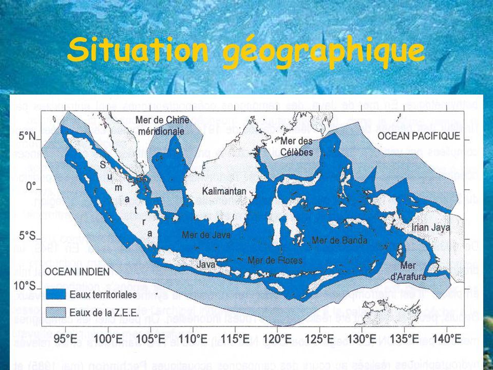 Situation géographique Entre la péninsule indochinoise et le continent australien Superficie: 7 700 000 km² Eaux marines = 75% du territoire