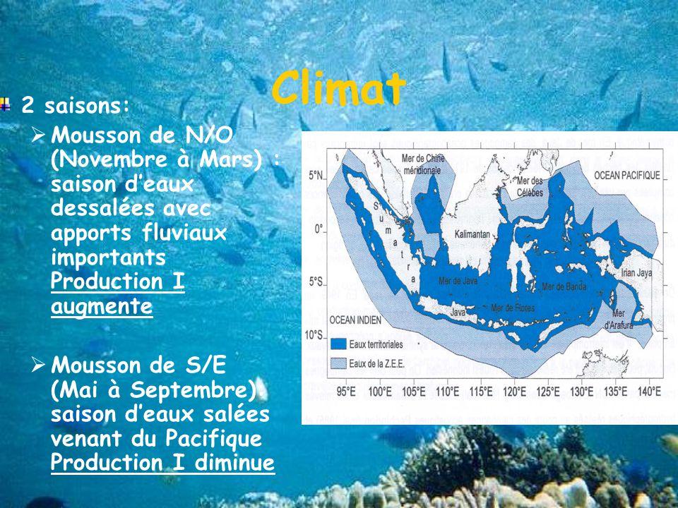 Climat 2 saisons: Mousson de N/O (Novembre à Mars) : saison deaux dessalées avec apports fluviaux importants Production I augmente Mousson de S/E (Mai à Septembre): saison deaux salées venant du Pacifique Production I diminue