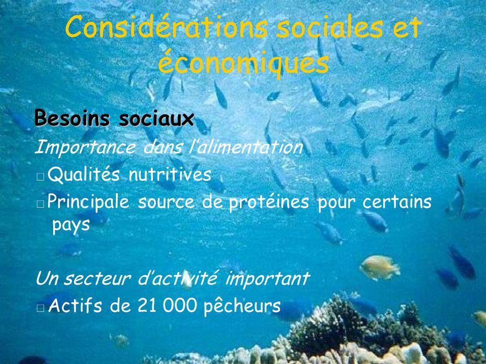 Considérations sociales et économiques Besoins sociaux Importance dans lalimentation Qualités nutritives Principale source de protéines pour certains pays Un secteur dactivité important Actifs de 21 000 pêcheurs