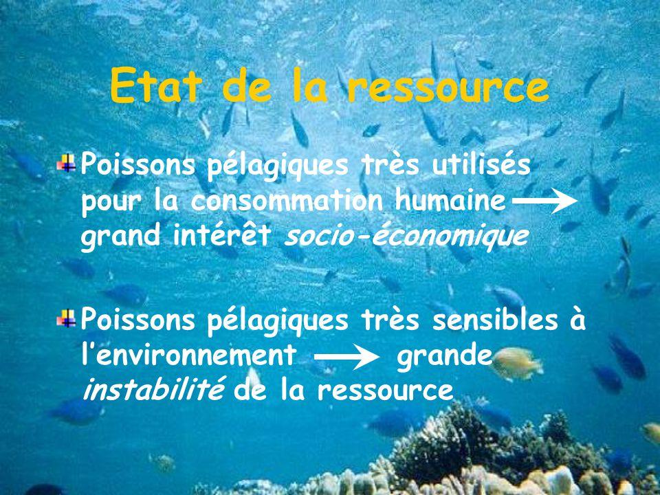 Etat de la ressource Poissons pélagiques très utilisés pour la consommation humaine grand intérêt socio-économique Poissons pélagiques très sensibles à lenvironnement grande instabilité de la ressource