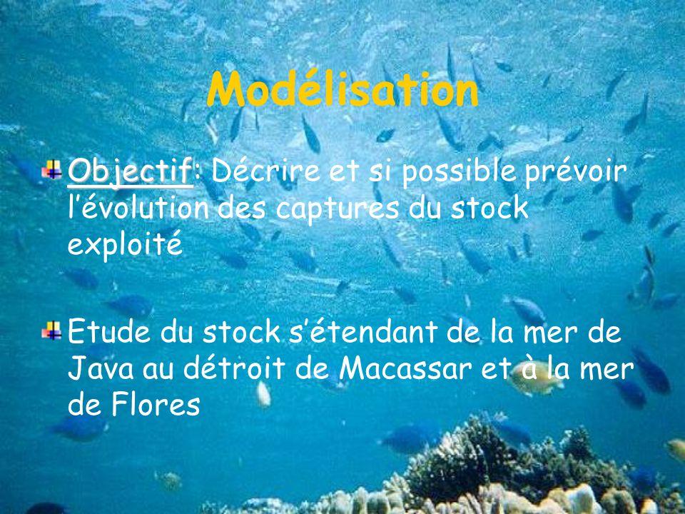 Modélisation Objectif Objectif: Décrire et si possible prévoir lévolution des captures du stock exploité Etude du stock sétendant de la mer de Java au détroit de Macassar et à la mer de Flores